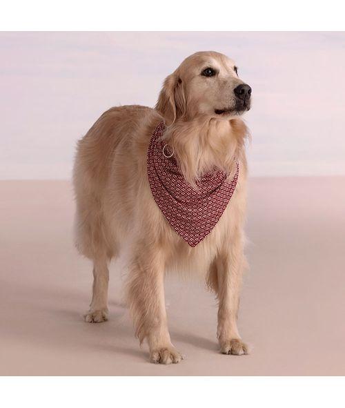Bandana-Dog-Malha-Natali-
